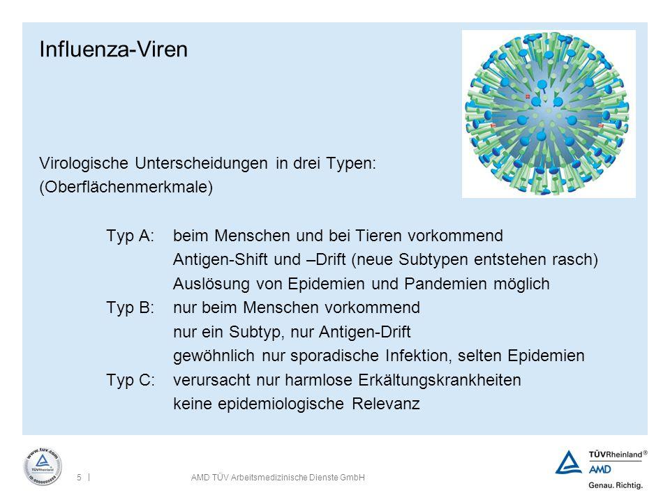 Influenza-Viren Virologische Unterscheidungen in drei Typen: