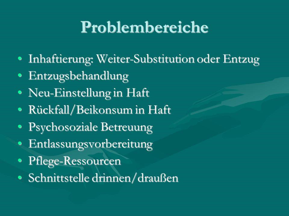 Problembereiche Inhaftierung: Weiter-Substitution oder Entzug
