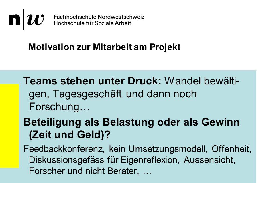 Motivation zur Mitarbeit am Projekt