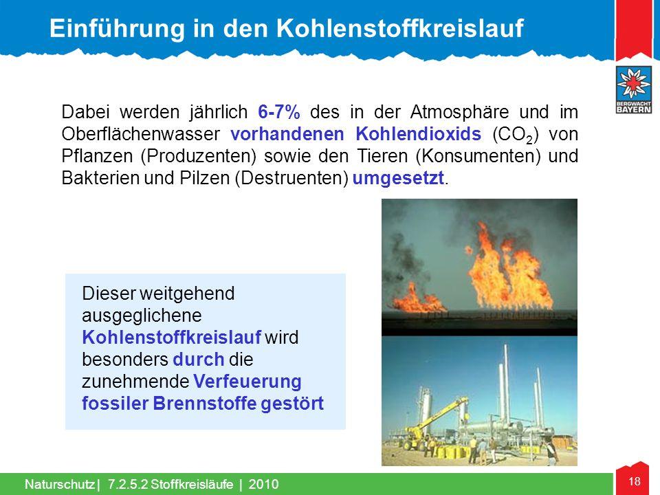 Einführung in den Kohlenstoffkreislauf