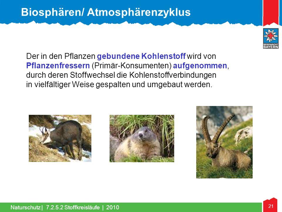 Biosphären/ Atmosphärenzyklus