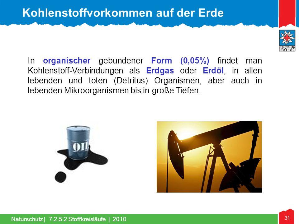 Kohlenstoffvorkommen auf der Erde