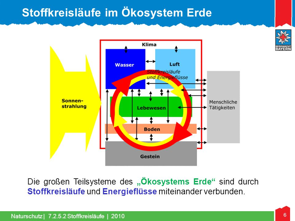 Stoffkreisläufe im Ökosystem Erde