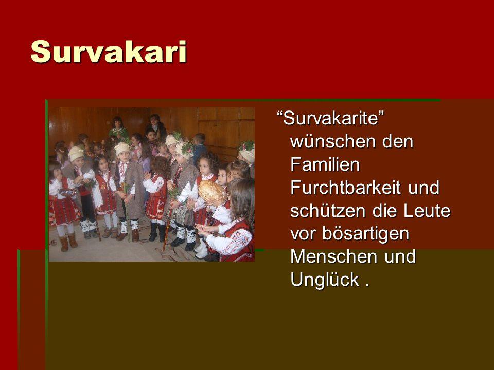 Survakari Survakarite wünschen den Familien Furchtbarkeit und schützen die Leute vor bösartigen Menschen und Unglück .