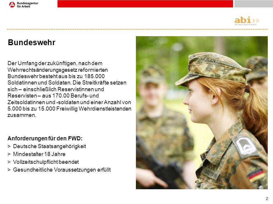 Freiwilliger Wehrdienst