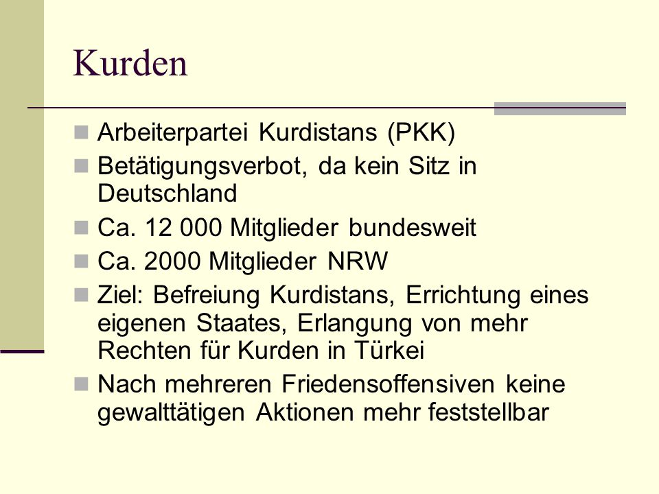 Kurden Arbeiterpartei Kurdistans (PKK)