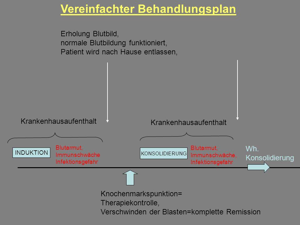 Vereinfachter Behandlungsplan