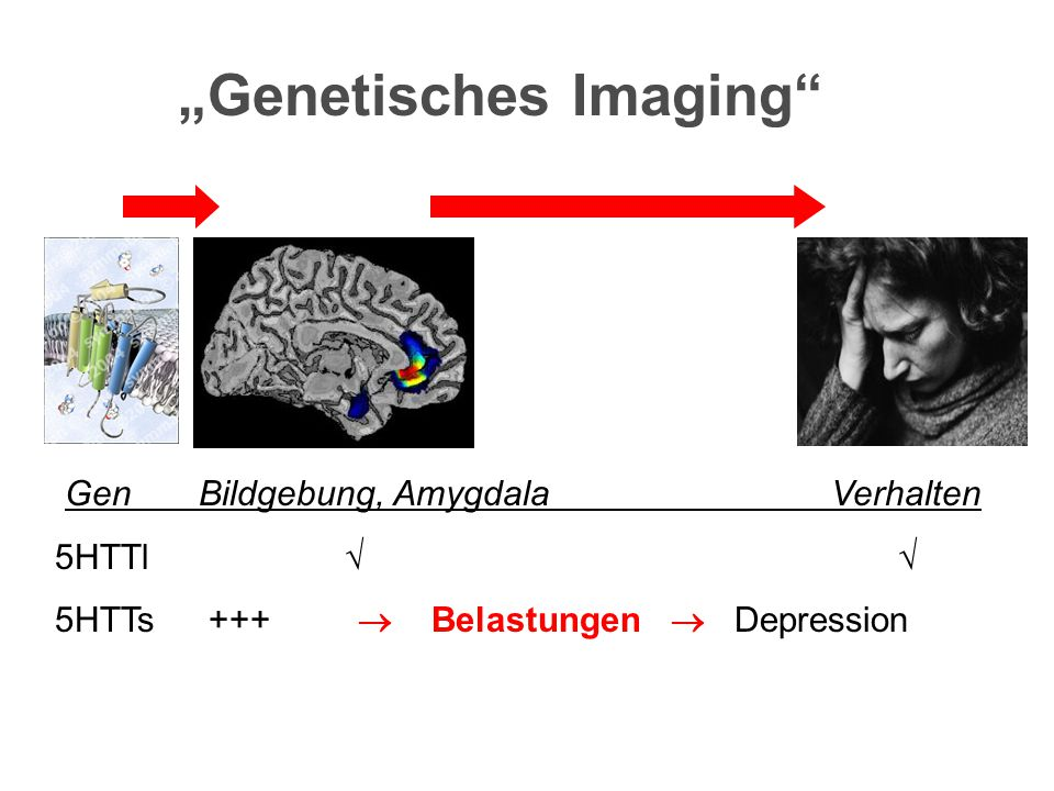 """""""Genetisches Imaging"""