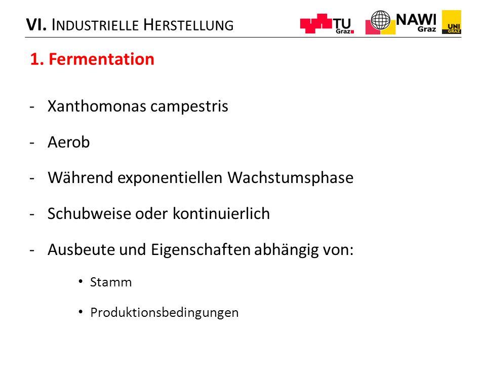 VI. Industrielle Herstellung