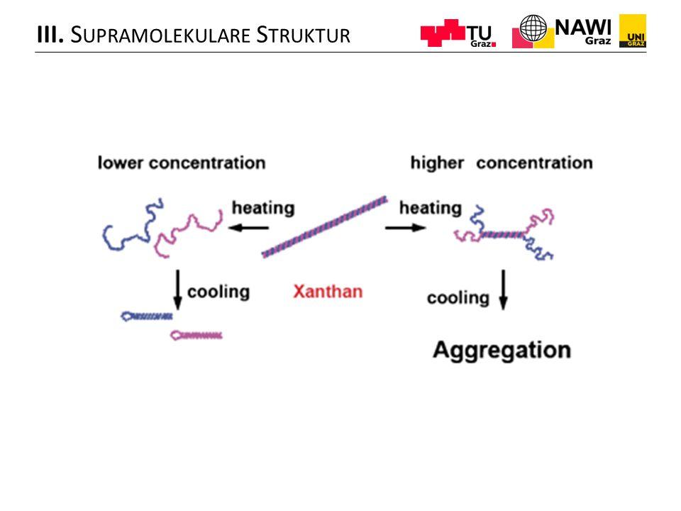 III. Supramolekulare Struktur