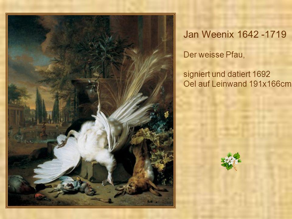 Jan Weenix 1642 -1719 Der weisse Pfau, signiert und datiert 1692