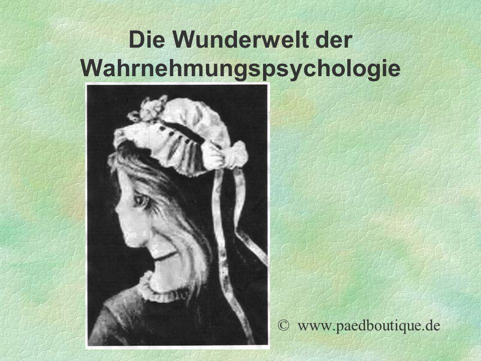 Die Wunderwelt der Wahrnehmungspsychologie