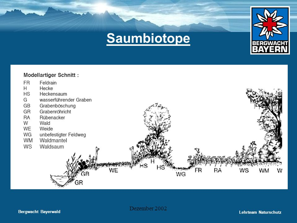 Saumbiotope Dezember 2002