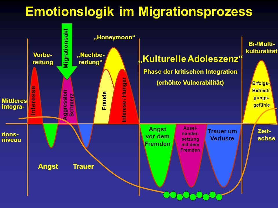 Emotionslogik im Migrationsprozess