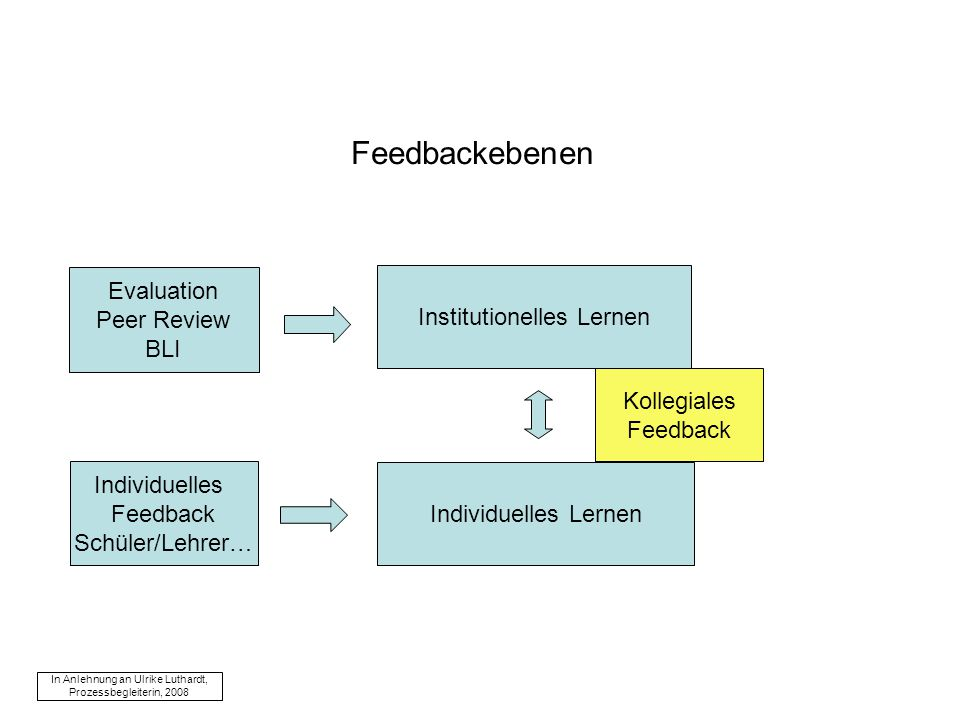 Feedbackebenen Evaluation Peer Review BLI Institutionelles Lernen