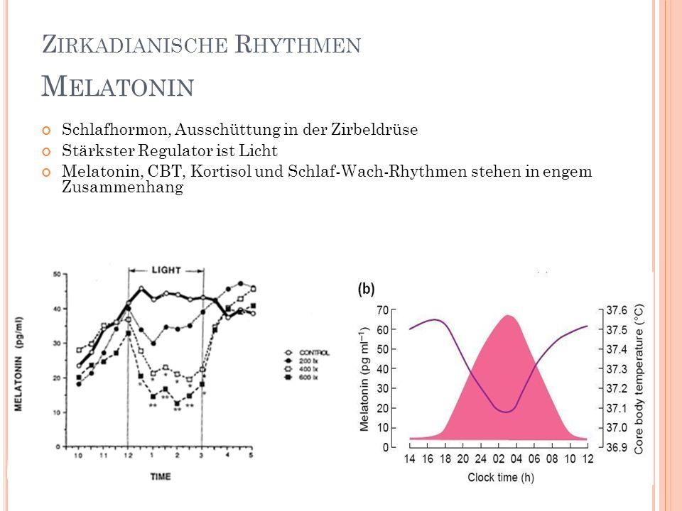 Melatonin Zirkadianische Rhythmen