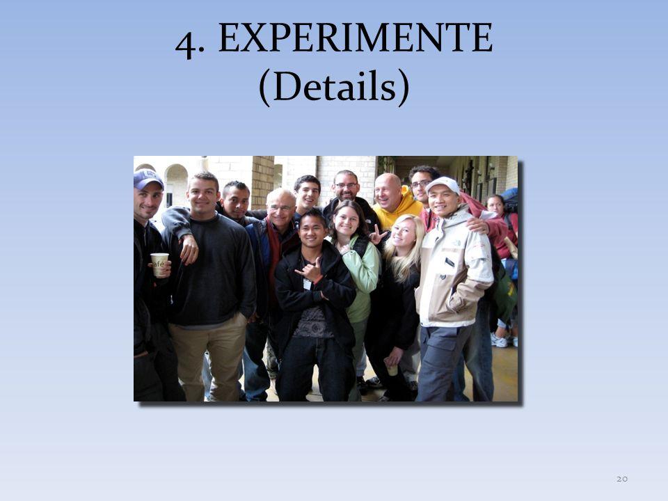 4. EXPERIMENTE (Details)