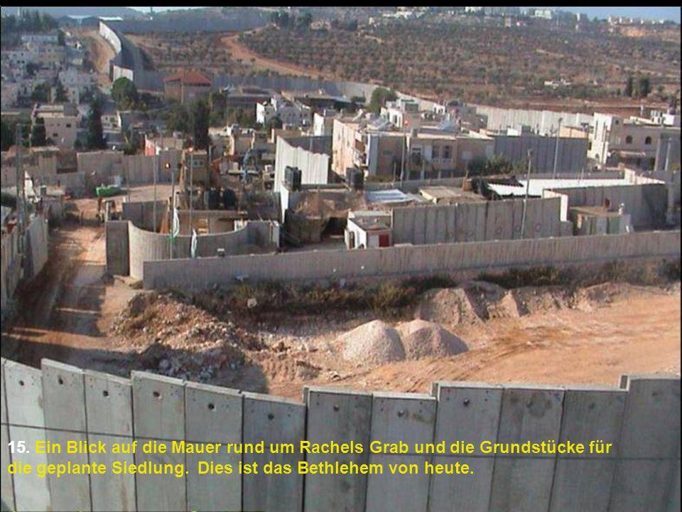 15. Ein Blick auf die Mauer rund um Rachels Grab und die Grundstücke für die geplante Siedlung.