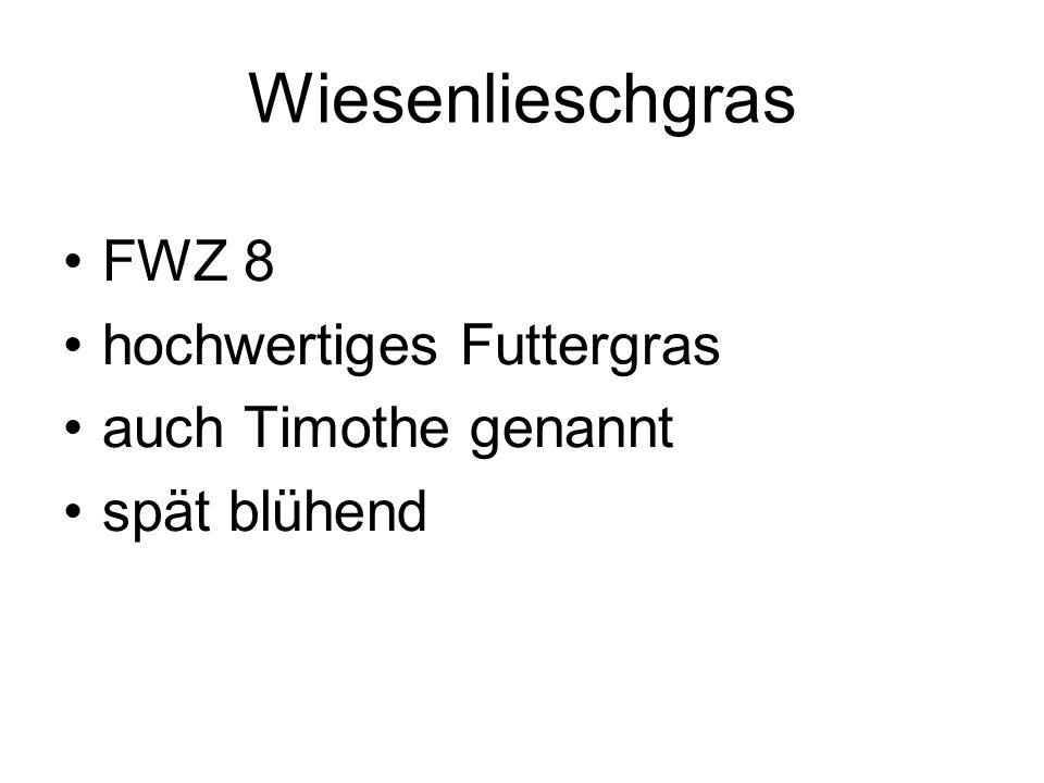 Wiesenlieschgras FWZ 8 hochwertiges Futtergras auch Timothe genannt