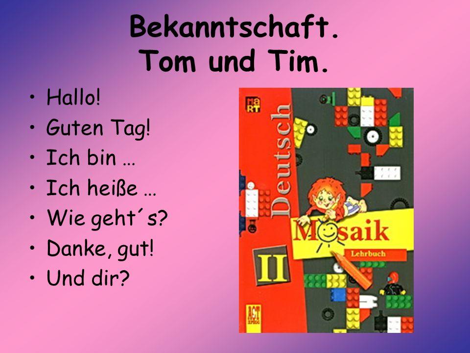 Bekanntschaft. Tom und Tim.