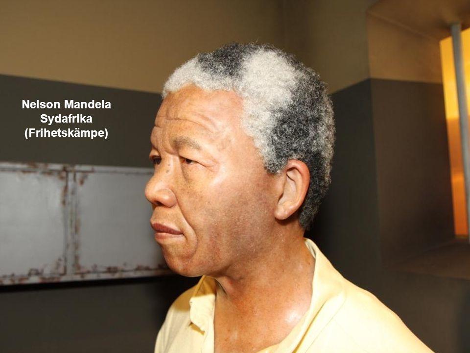 Nelson Mandela Sydafrika (Frihetskämpe)