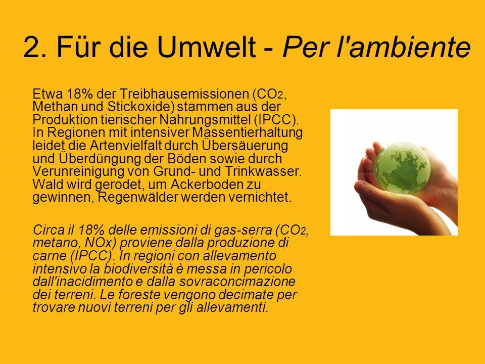 2. Für die Umwelt - Per l ambiente
