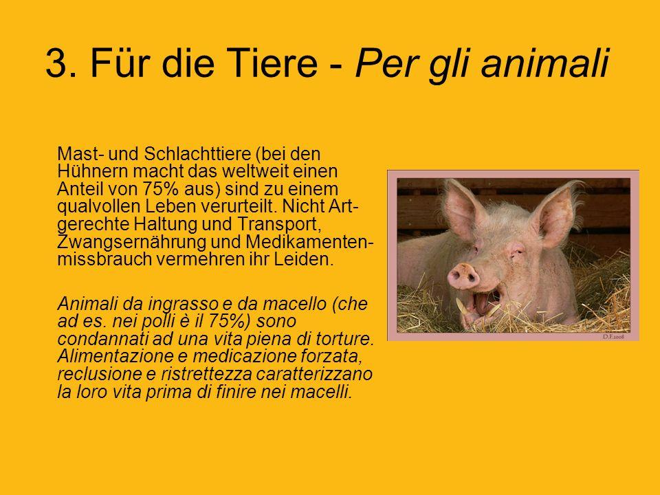 3. Für die Tiere - Per gli animali