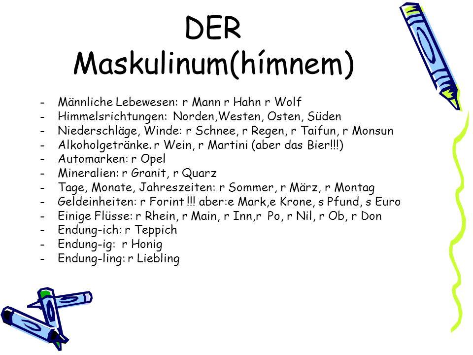 DER Maskulinum(hímnem)