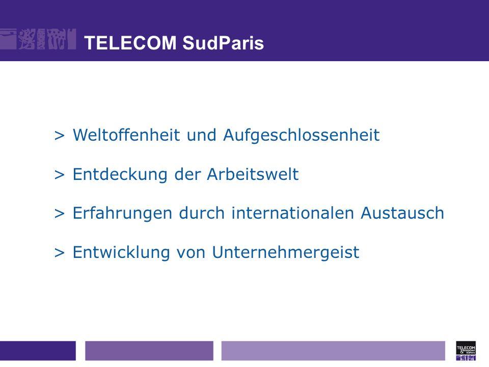 TELECOM SudParis > Weltoffenheit und Aufgeschlossenheit
