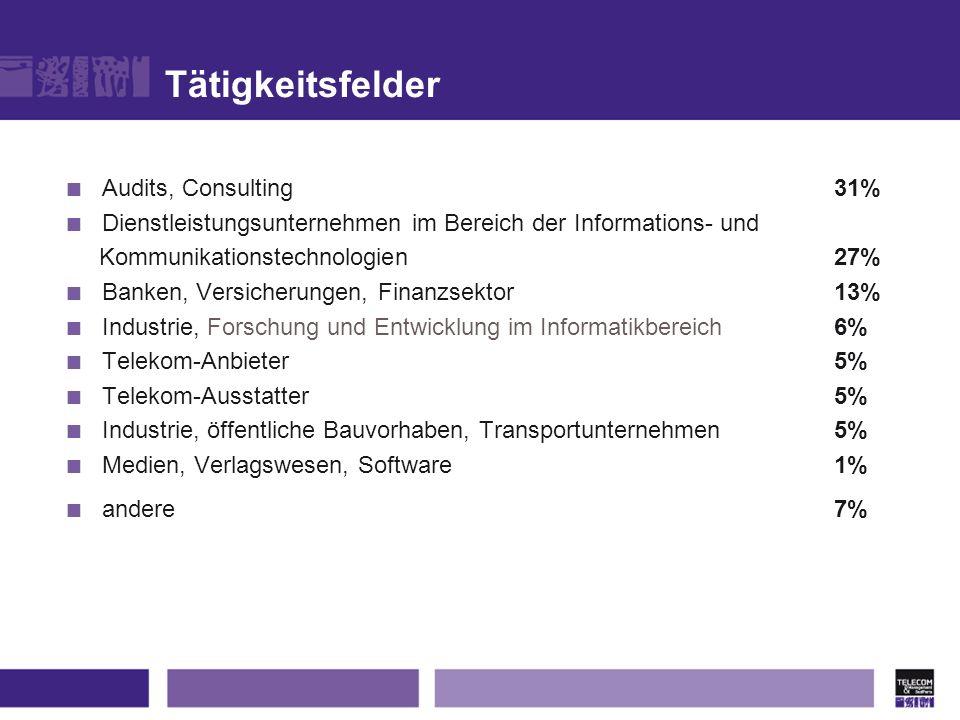 Tätigkeitsfelder Audits, Consulting 31%