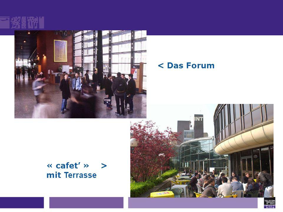 < Das Forum « cafet' » > mit Terrasse