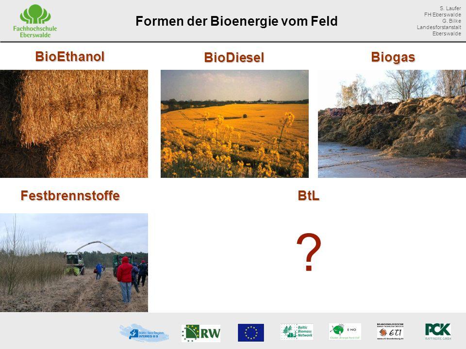 Formen der Bioenergie vom Feld