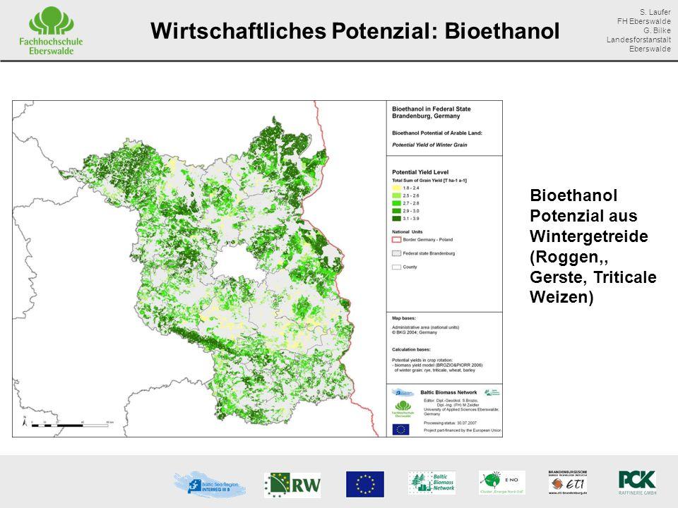 Wirtschaftliches Potenzial: Bioethanol