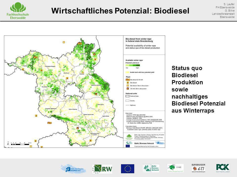 Wirtschaftliches Potenzial: Biodiesel