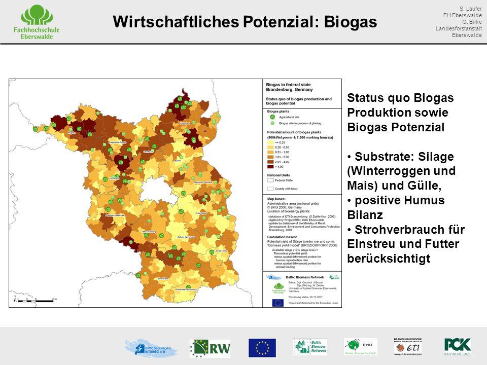 Wirtschaftliches Potenzial: Biogas