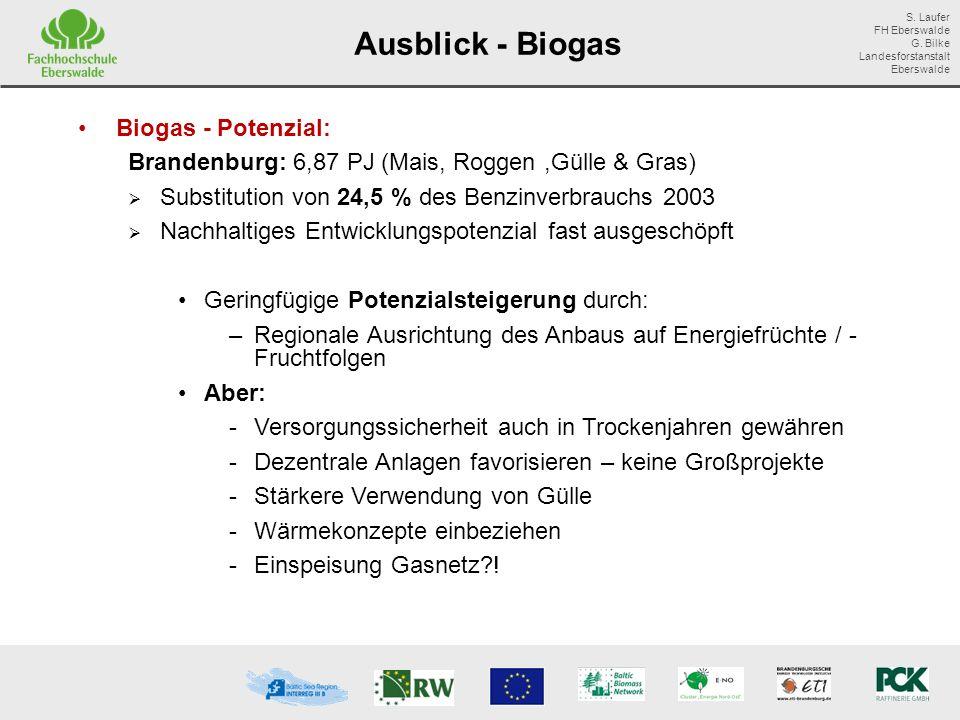 Ausblick - Biogas Biogas - Potenzial: