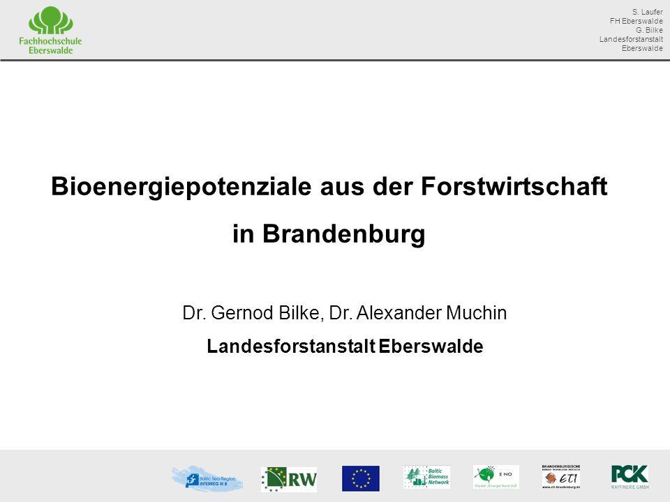 Bioenergiepotenziale aus der Forstwirtschaft in Brandenburg
