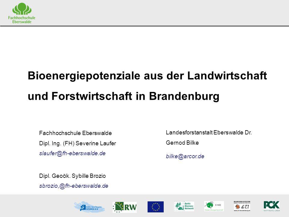 Bioenergiepotenziale aus der Landwirtschaft und Forstwirtschaft in Brandenburg