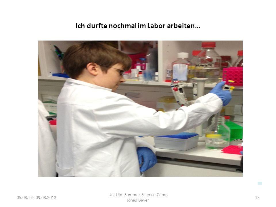 Ich durfte nochmal im Labor arbeiten…
