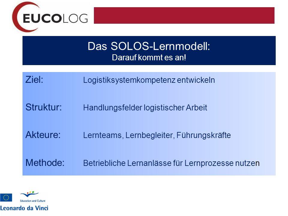 Das SOLOS-Lernmodell: Darauf kommt es an!