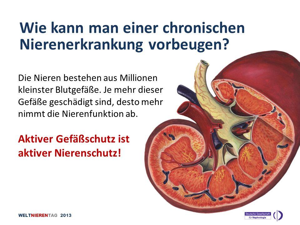 Wie kann man einer chronischen Nierenerkrankung vorbeugen