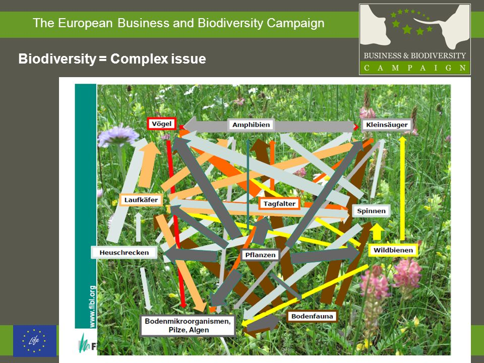 Biodiversity = Complex issue