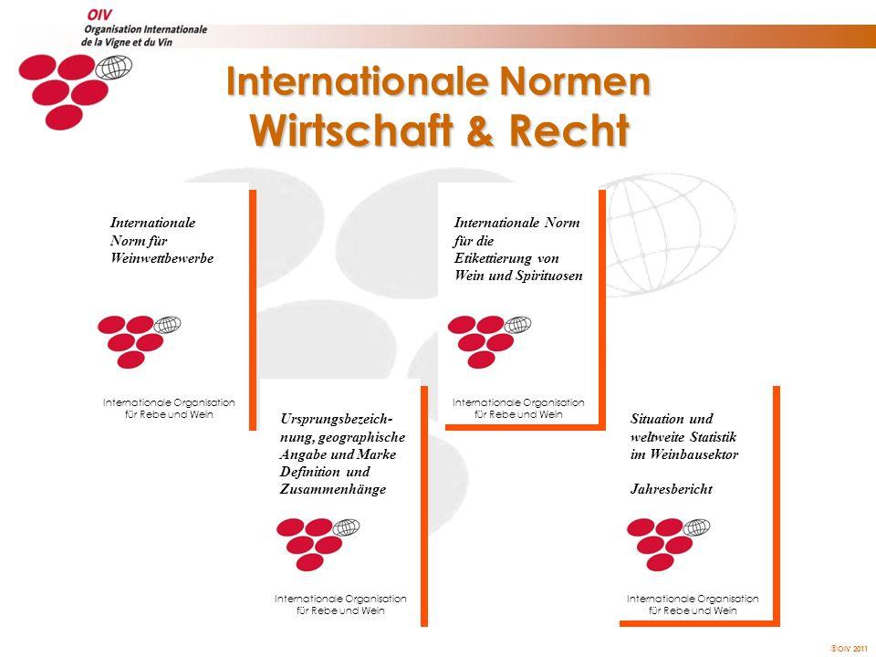 Internationale Normen Wirtschaft & Recht