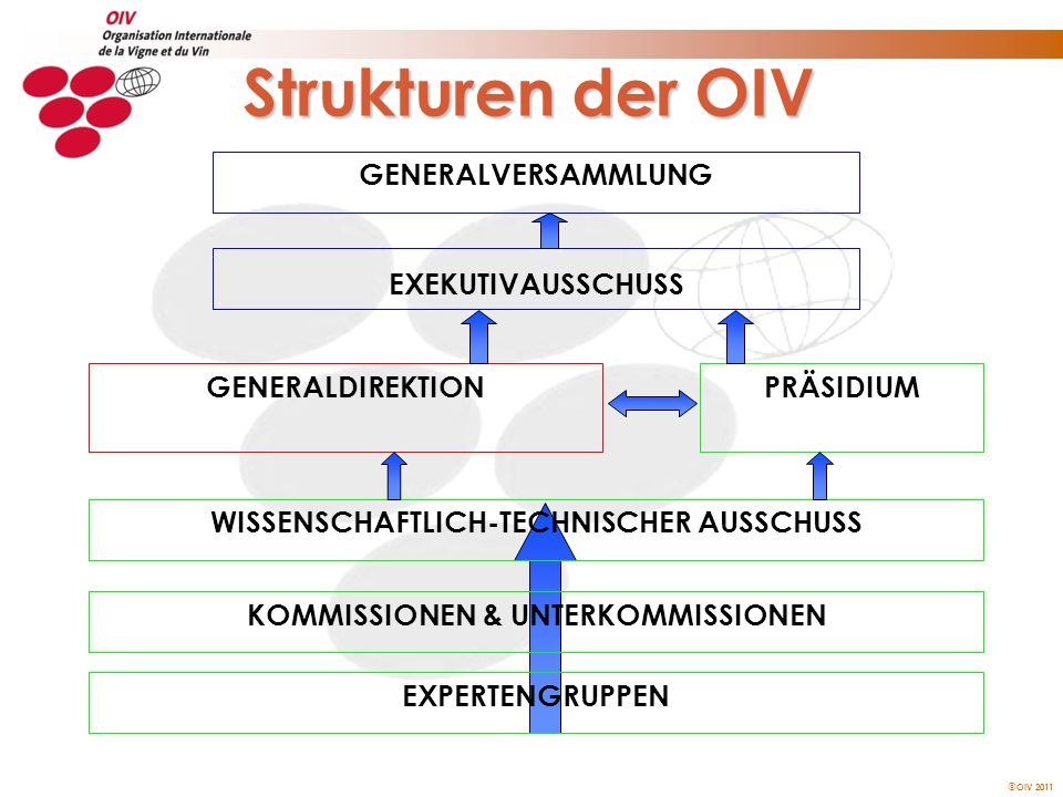 Strukturen der OIV GENERALVERSAMMLUNG EXEKUTIVAUSSCHUSS