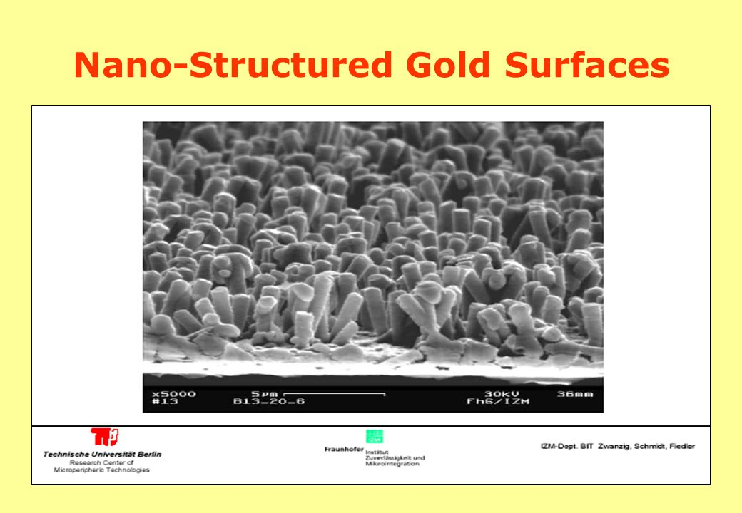 Nano-Structured Gold Surfaces