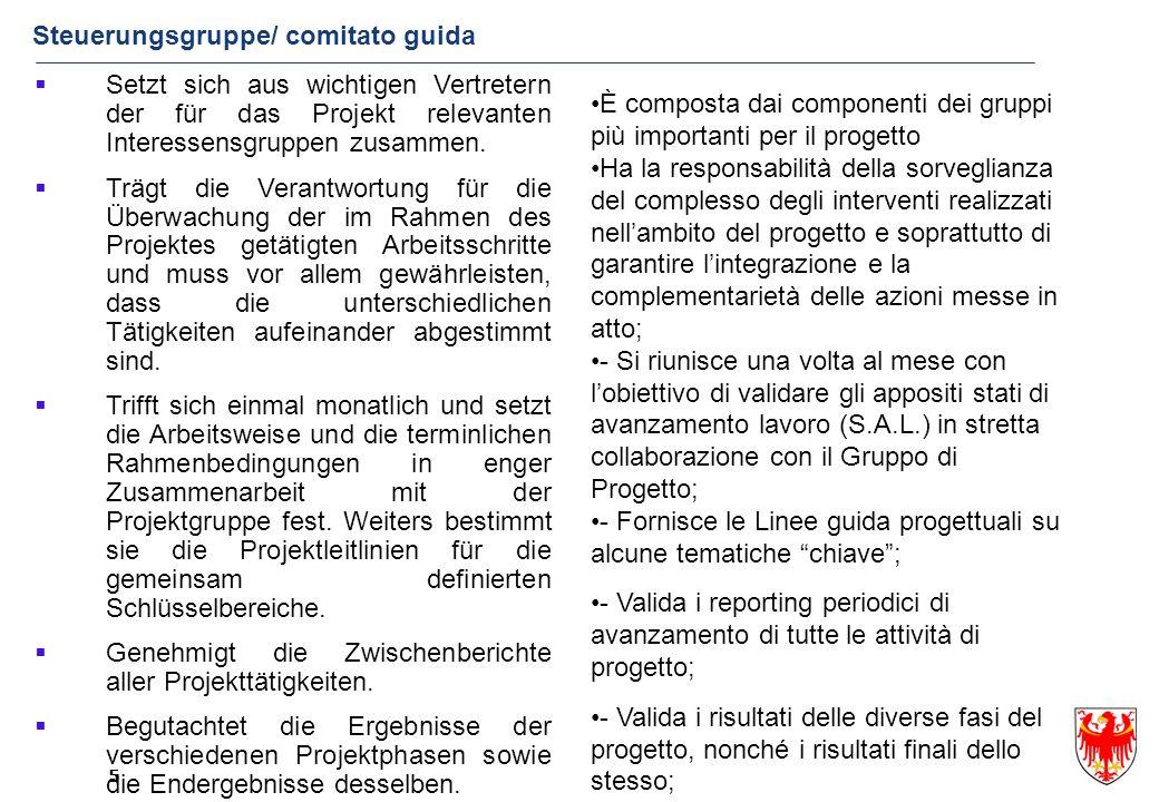Steuerungsgruppe/ comitato guida