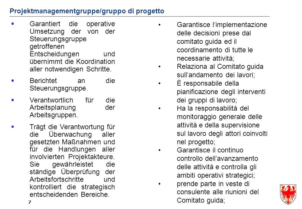 Projektmanagementgruppe/gruppo di progetto