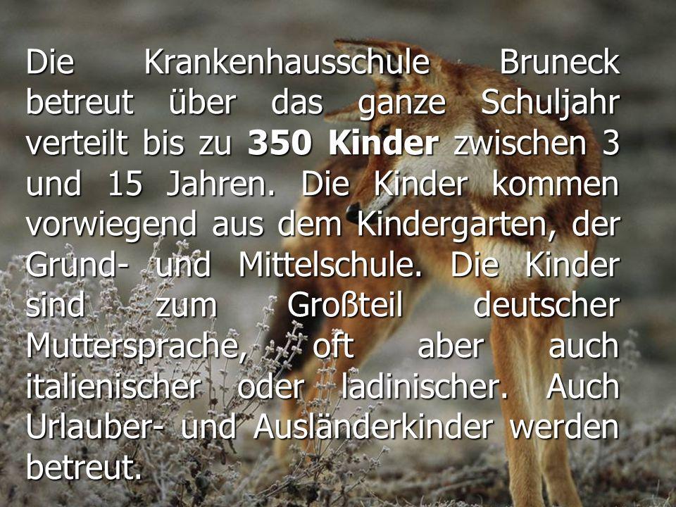 Die Krankenhausschule Bruneck betreut über das ganze Schuljahr verteilt bis zu 350 Kinder zwischen 3 und 15 Jahren.