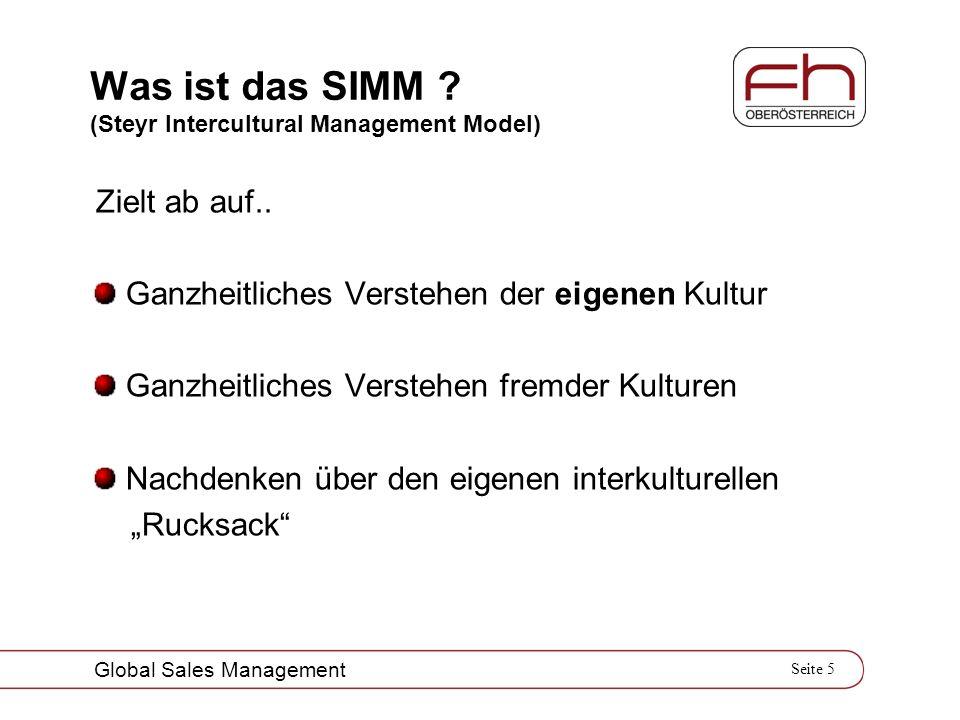 Was ist das SIMM (Steyr Intercultural Management Model)