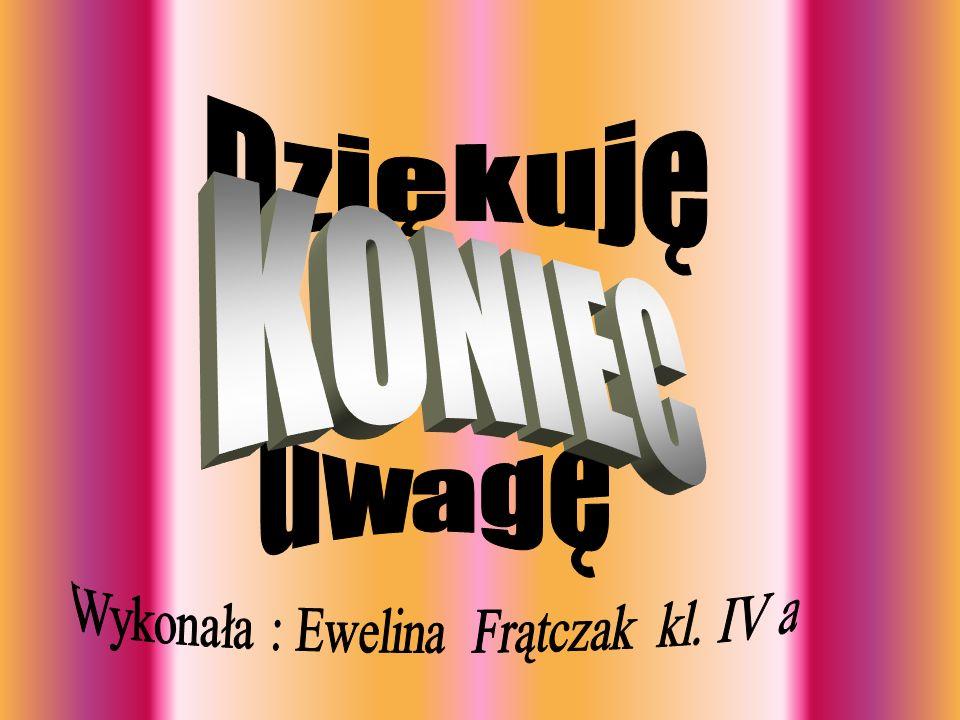 Wykonała : Ewelina Frątczak kl. IV a